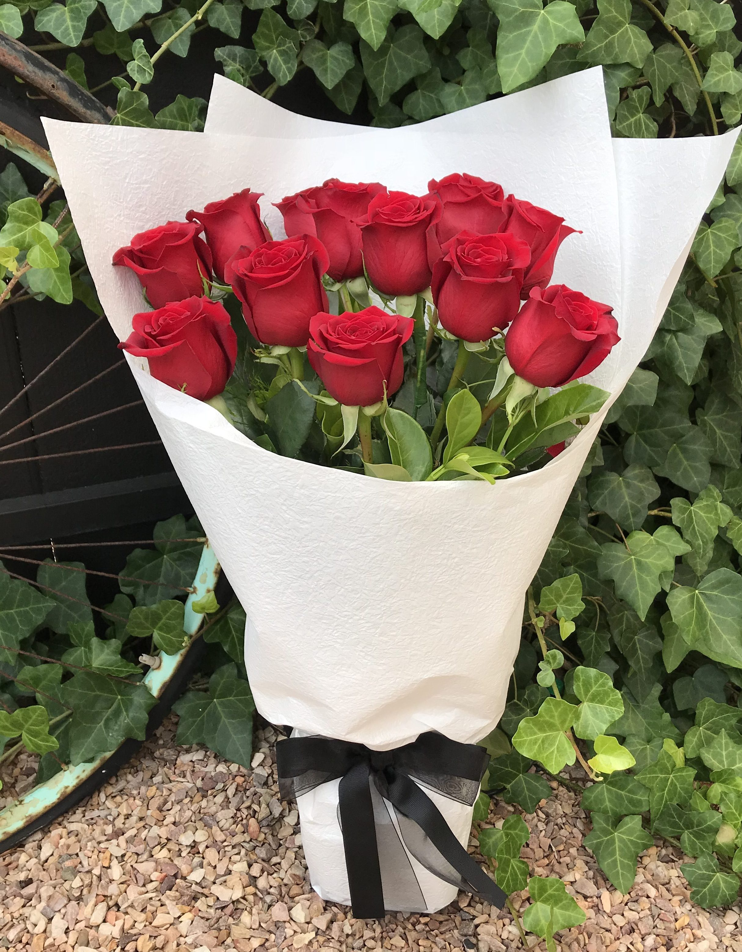 dozen red roses bliss flowers o halloran hill